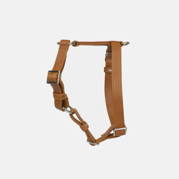 Neula dog harness, harness dog vegan leather, harness for dogs, faux leather harness , barcelona dog brand, luxury harness for dogs, dog luxury harness, harness high quality, dog accessories, dog premium vegan leather harness, leash bag dispenser for dogs, high end accessories for dogs, best dog harness for dogs, most beautiful dog harness, arneses para perros de diseño, tienda de diseño para perros Barcelona España, arneses de diseño, arneses piel vegana para perros, arnés para perros en Madrid, accesorios de calidad para perros en barcelona, arnés lujo perros, perros, mascotas, accesorios para mascotas, instagram neula, instagram neulathedog, mejor arnes para perro, arnes para perros pequeños, arnes para perros medianos, arnes para perros grandes, arnes marron para perros, arnes en T para perros, arnes para perro valencia, arnes para perro tarragona, arnes para perro malaga, arnes para perro bilbao, harnais cuir végétalien chien, best harness for dogs, which is the best harness for dogs,